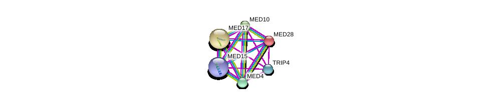 http://string-db.org/version_10/api/image/networkList?limit=0&targetmode=proteins&caller_identity=gene_cards&network_flavor=evidence&identifiers=9606.ENSP00000261884%0d%0a9606.ENSP00000237380%0d%0a9606.ENSP00000251871%0d%0a9606.ENSP00000255764%0d%0a9606.ENSP00000258648%0d%0a9606.ENSP00000263205%0d%0a