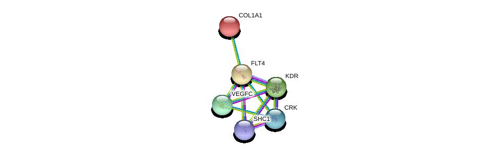 http://string-db.org/version_10/api/image/networkList?limit=0&targetmode=proteins&caller_identity=gene_cards&network_flavor=evidence&identifiers=9606.ENSP00000261937%0d%0a9606.ENSP00000280193%0d%0a9606.ENSP00000401303%0d%0a9606.ENSP00000263923%0d%0a9606.ENSP00000300574%0d%0a9606.ENSP00000225964%0d%0a