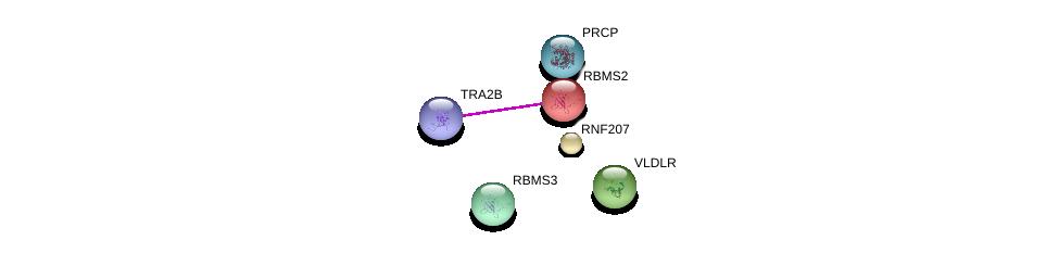 http://string-db.org/version_10/api/image/networkList?limit=0&targetmode=proteins&caller_identity=gene_cards&network_flavor=evidence&identifiers=9606.ENSP00000262031%0d%0a9606.ENSP00000371532%0d%0a9606.ENSP00000377055%0d%0a9606.ENSP00000367173%0d%0a9606.ENSP00000373277%0d%0a9606.ENSP00000416959%0d%0a