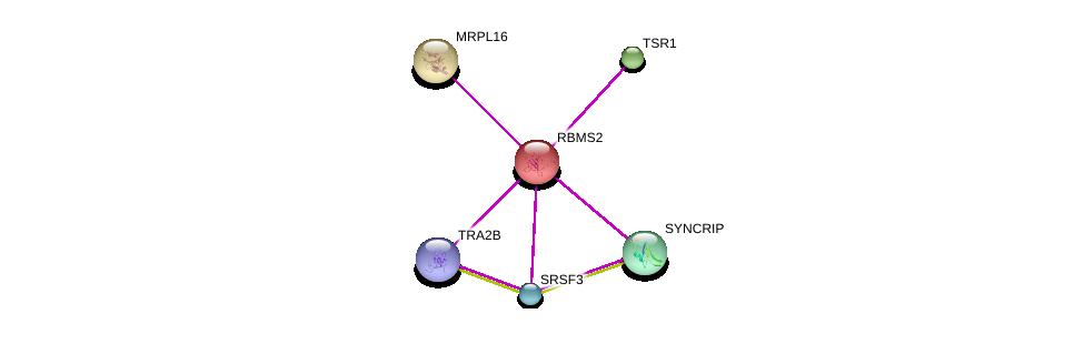 http://string-db.org/version_10/api/image/networkList?limit=0&targetmode=proteins&caller_identity=gene_cards&network_flavor=evidence&identifiers=9606.ENSP00000262031%0d%0a9606.ENSP00000416959%0d%0a9606.ENSP00000362820%0d%0a9606.ENSP00000301364%0d%0a9606.ENSP00000300151%0d%0a9606.ENSP00000358635%0d%0a