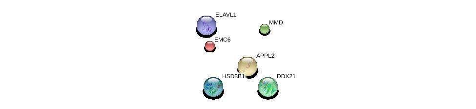 http://string-db.org/version_10/api/image/networkList?limit=0&targetmode=proteins&caller_identity=gene_cards&network_flavor=evidence&identifiers=9606.ENSP00000262065%0d%0a9606.ENSP00000248378%0d%0a9606.ENSP00000385269%0d%0a9606.ENSP00000258530%0d%0a9606.ENSP00000358421%0d%0a9606.ENSP00000346120%0d%0a