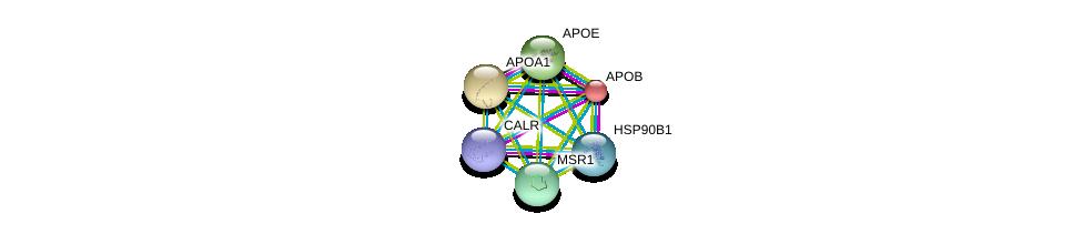 http://string-db.org/version_10/api/image/networkList?limit=0&targetmode=proteins&caller_identity=gene_cards&network_flavor=evidence&identifiers=9606.ENSP00000262101%0d%0a9606.ENSP00000320866%0d%0a9606.ENSP00000299767%0d%0a9606.ENSP00000252486%0d%0a9606.ENSP00000236850%0d%0a9606.ENSP00000233242%0d%0a