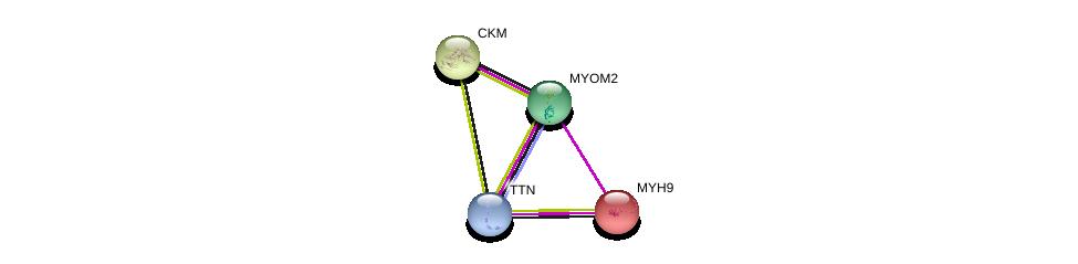 http://string-db.org/version_10/api/image/networkList?limit=0&targetmode=proteins&caller_identity=gene_cards&network_flavor=evidence&identifiers=9606.ENSP00000262113%0d%0a9606.ENSP00000221476%0d%0a9606.ENSP00000216181%0d%0a9606.ENSP00000343764%0d%0a