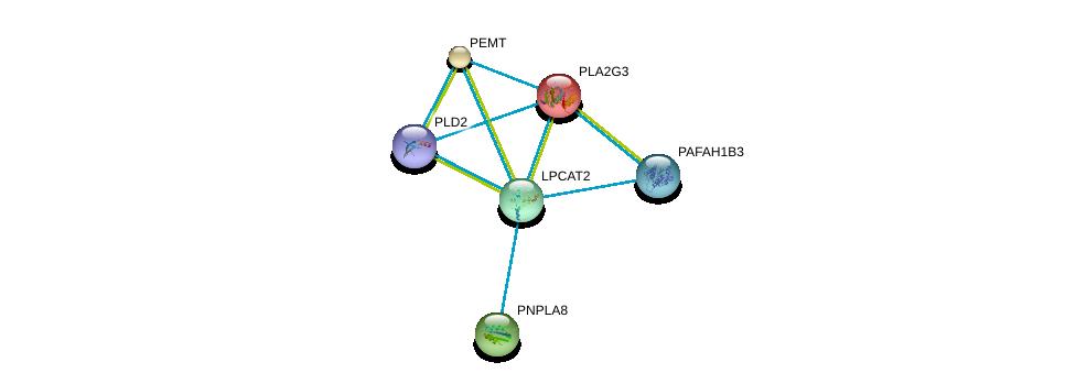 http://string-db.org/version_10/api/image/networkList?limit=0&targetmode=proteins&caller_identity=gene_cards&network_flavor=evidence&identifiers=9606.ENSP00000262134%0d%0a9606.ENSP00000215885%0d%0a9606.ENSP00000255389%0d%0a9606.ENSP00000257694%0d%0a9606.ENSP00000262890%0d%0a9606.ENSP00000263088%0d%0a