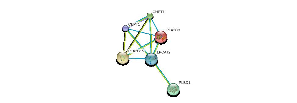 http://string-db.org/version_10/api/image/networkList?limit=0&targetmode=proteins&caller_identity=gene_cards&network_flavor=evidence&identifiers=9606.ENSP00000262134%0d%0a9606.ENSP00000349696%0d%0a9606.ENSP00000215885%0d%0a9606.ENSP00000219345%0d%0a9606.ENSP00000229266%0d%0a9606.ENSP00000240617%0d%0a