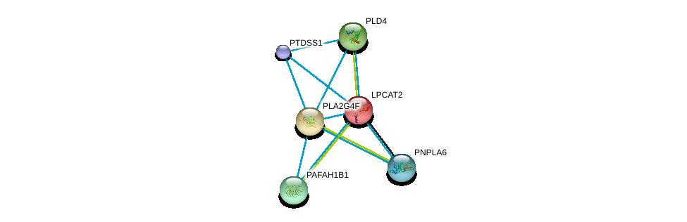 http://string-db.org/version_10/api/image/networkList?limit=0&targetmode=proteins&caller_identity=gene_cards&network_flavor=evidence&identifiers=9606.ENSP00000262134%0d%0a9606.ENSP00000430548%0d%0a9606.ENSP00000407509%0d%0a9606.ENSP00000380378%0d%0a9606.ENSP00000376372%0d%0a9606.ENSP00000371833%0d%0a