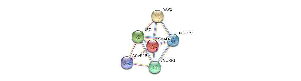http://string-db.org/version_10/api/image/networkList?limit=0&targetmode=proteins&caller_identity=gene_cards&network_flavor=evidence&identifiers=9606.ENSP00000262158%0d%0a9606.ENSP00000364133%0d%0a9606.ENSP00000344818%0d%0a9606.ENSP00000354621%0d%0a9606.ENSP00000442656%0d%0a9606.ENSP00000282441%0d%0a