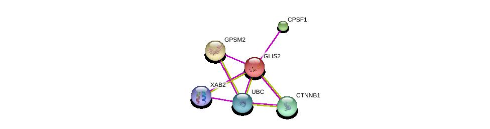 http://string-db.org/version_10/api/image/networkList?limit=0&targetmode=proteins&caller_identity=gene_cards&network_flavor=evidence&identifiers=9606.ENSP00000262366%0d%0a9606.ENSP00000344456%0d%0a9606.ENSP00000344818%0d%0a9606.ENSP00000351137%0d%0a9606.ENSP00000339353%0d%0a9606.ENSP00000264126%0d%0a