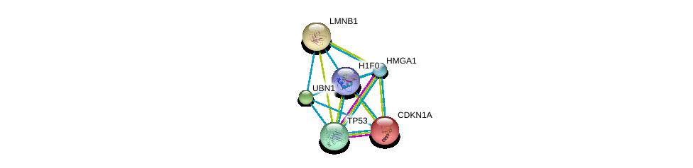 http://string-db.org/version_10/api/image/networkList?limit=0&targetmode=proteins&caller_identity=gene_cards&network_flavor=evidence&identifiers=9606.ENSP00000262376%0d%0a9606.ENSP00000269305%0d%0a9606.ENSP00000344504%0d%0a9606.ENSP00000244741%0d%0a9606.ENSP00000308227%0d%0a9606.ENSP00000261366%0d%0a