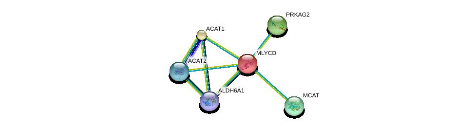 http://string-db.org/version_10/api/image/networkList?limit=0&targetmode=proteins&caller_identity=gene_cards&network_flavor=evidence&identifiers=9606.ENSP00000262430%0d%0a9606.ENSP00000356015%0d%0a9606.ENSP00000450436%0d%0a9606.ENSP00000265838%0d%0a9606.ENSP00000287878%0d%0a9606.ENSP00000290429%0d%0a