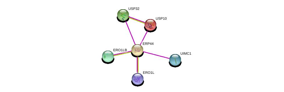 http://string-db.org/version_10/api/image/networkList?limit=0&targetmode=proteins&caller_identity=gene_cards&network_flavor=evidence&identifiers=9606.ENSP00000262455%0d%0a9606.ENSP00000219473%0d%0a9606.ENSP00000300896%0d%0a9606.ENSP00000366434%0d%0a9606.ENSP00000379042%0d%0a9606.ENSP00000346635%0d%0a