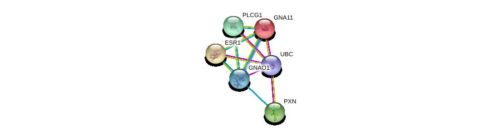 http://string-db.org/version_10/api/image/networkList?limit=0&targetmode=proteins&caller_identity=gene_cards&network_flavor=evidence&identifiers=9606.ENSP00000262493%0d%0a9606.ENSP00000344818%0d%0a9606.ENSP00000078429%0d%0a9606.ENSP00000228307%0d%0a9606.ENSP00000206249%0d%0a9606.ENSP00000244007%0d%0a