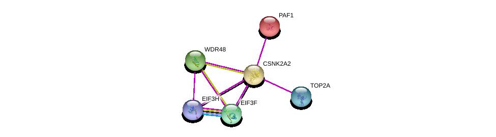 http://string-db.org/version_10/api/image/networkList?limit=0&targetmode=proteins&caller_identity=gene_cards&network_flavor=evidence&identifiers=9606.ENSP00000262506%0d%0a9606.ENSP00000310040%0d%0a9606.ENSP00000411532%0d%0a9606.ENSP00000307491%0d%0a9606.ENSP00000429931%0d%0a9606.ENSP00000221265%0d%0a
