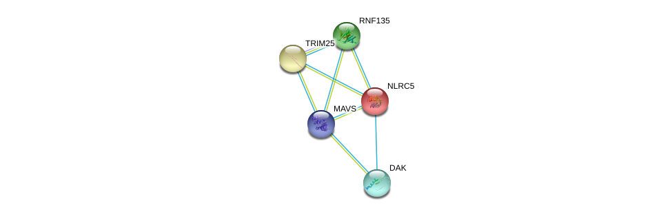 http://string-db.org/version_10/api/image/networkList?limit=0&targetmode=proteins&caller_identity=gene_cards&network_flavor=evidence&identifiers=9606.ENSP00000262510%0d%0a9606.ENSP00000328340%0d%0a9606.ENSP00000401980%0d%0a9606.ENSP00000323889%0d%0a9606.ENSP00000323889%0d%0a9606.ENSP00000378360%0d%0a