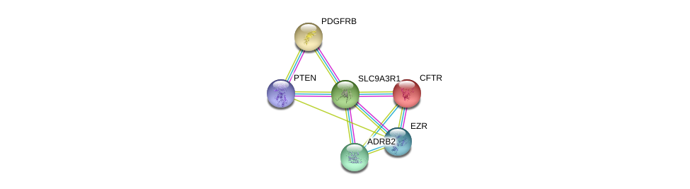 http://string-db.org/version_10/api/image/networkList?limit=0&targetmode=proteins&caller_identity=gene_cards&network_flavor=evidence&identifiers=9606.ENSP00000262613%0d%0a9606.ENSP00000003084%0d%0a9606.ENSP00000261799%0d%0a9606.ENSP00000338934%0d%0a9606.ENSP00000361021%0d%0a9606.ENSP00000305372%0d%0a
