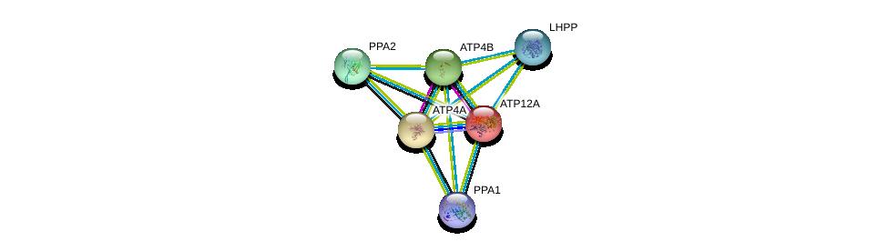 http://string-db.org/version_10/api/image/networkList?limit=0&targetmode=proteins&caller_identity=gene_cards&network_flavor=evidence&identifiers=9606.ENSP00000262623%0d%0a9606.ENSP00000218548%0d%0a9606.ENSP00000343885%0d%0a9606.ENSP00000357835%0d%0a9606.ENSP00000362329%0d%0a9606.ENSP00000334216%0d%0a