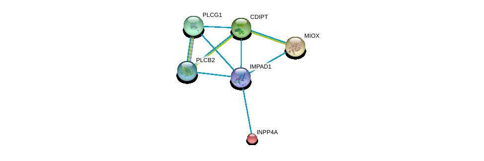 http://string-db.org/version_10/api/image/networkList?limit=0&targetmode=proteins&caller_identity=gene_cards&network_flavor=evidence&identifiers=9606.ENSP00000262644%0d%0a9606.ENSP00000074304%0d%0a9606.ENSP00000216075%0d%0a9606.ENSP00000219789%0d%0a9606.ENSP00000244007%0d%0a9606.ENSP00000260402%0d%0a
