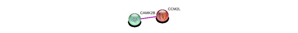 http://string-db.org/version_10/api/image/networkList?limit=0&targetmode=proteins&caller_identity=gene_cards&network_flavor=evidence&identifiers=9606.ENSP00000262659%0d%0a9606.ENSP00000379098%0d%0a