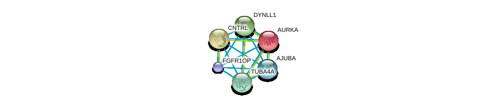 http://string-db.org/version_10/api/image/networkList?limit=0&targetmode=proteins&caller_identity=gene_cards&network_flavor=evidence&identifiers=9606.ENSP00000262713%0d%0a9606.ENSP00000355812%0d%0a9606.ENSP00000216911%0d%0a9606.ENSP00000238341%0d%0a9606.ENSP00000242577%0d%0a9606.ENSP00000248437%0d%0a