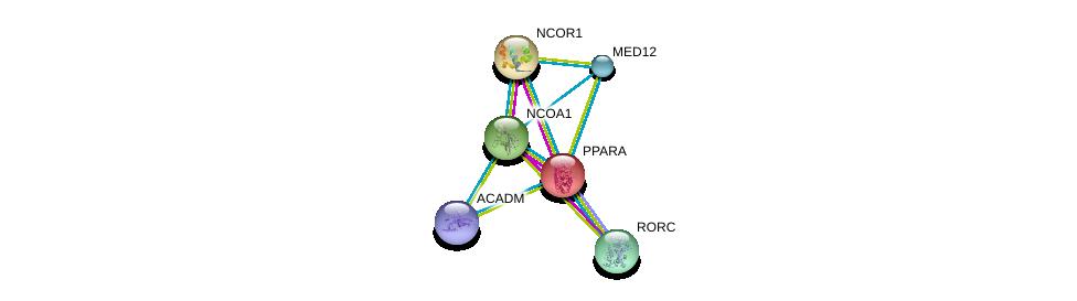 http://string-db.org/version_10/api/image/networkList?limit=0&targetmode=proteins&caller_identity=gene_cards&network_flavor=evidence&identifiers=9606.ENSP00000262735%0d%0a9606.ENSP00000268712%0d%0a9606.ENSP00000320940%0d%0a9606.ENSP00000327025%0d%0a9606.ENSP00000363193%0d%0a9606.ENSP00000409612%0d%0a