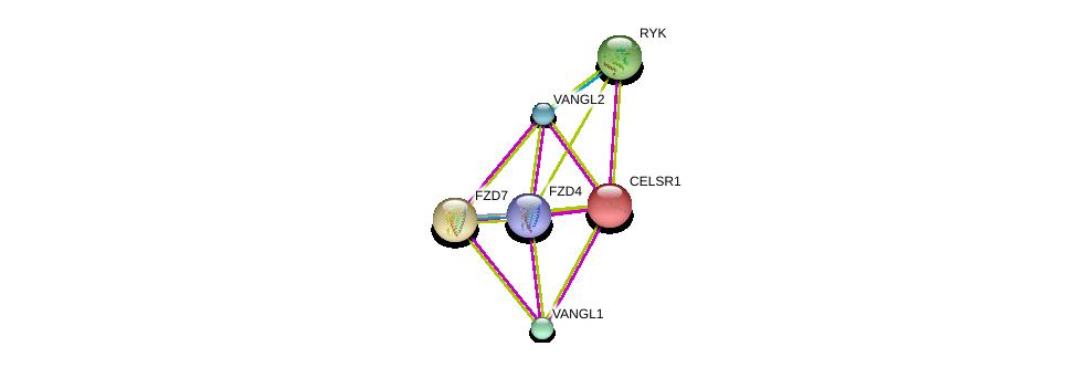http://string-db.org/version_10/api/image/networkList?limit=0&targetmode=proteins&caller_identity=gene_cards&network_flavor=evidence&identifiers=9606.ENSP00000262738%0d%0a9606.ENSP00000357040%0d%0a9606.ENSP00000310800%0d%0a9606.ENSP00000296084%0d%0a9606.ENSP00000434034%0d%0a9606.ENSP00000286201%0d%0a