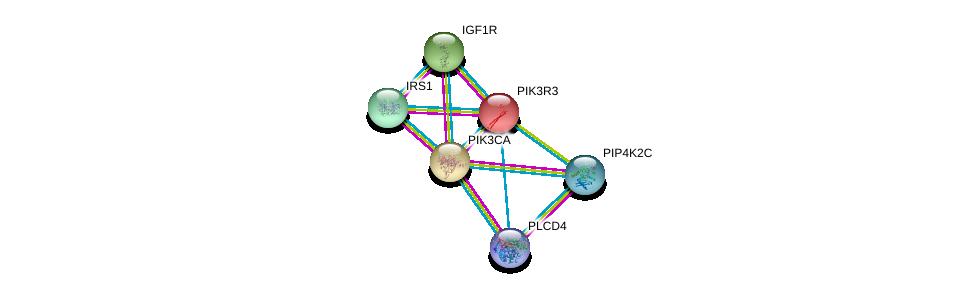http://string-db.org/version_10/api/image/networkList?limit=0&targetmode=proteins&caller_identity=gene_cards&network_flavor=evidence&identifiers=9606.ENSP00000262741%0d%0a9606.ENSP00000268035%0d%0a9606.ENSP00000304895%0d%0a9606.ENSP00000263967%0d%0a9606.ENSP00000347032%0d%0a9606.ENSP00000388631%0d%0a