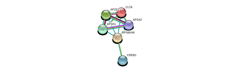 http://string-db.org/version_10/api/image/networkList?limit=0&targetmode=proteins&caller_identity=gene_cards&network_flavor=evidence&identifiers=9606.ENSP00000262752%0d%0a9606.ENSP00000387699%0d%0a9606.ENSP00000263270%0d%0a9606.ENSP00000413234%0d%0a9606.ENSP00000242285%0d%0a9606.ENSP00000351926%0d%0a