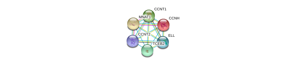 http://string-db.org/version_10/api/image/networkList?limit=0&targetmode=proteins&caller_identity=gene_cards&network_flavor=evidence&identifiers=9606.ENSP00000262809%0d%0a9606.ENSP00000256897%0d%0a9606.ENSP00000261245%0d%0a9606.ENSP00000261900%0d%0a9606.ENSP00000262306%0d%0a9606.ENSP00000264157%0d%0a