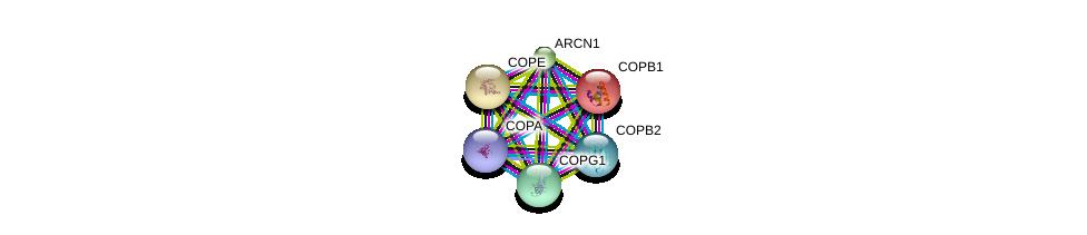 http://string-db.org/version_10/api/image/networkList?limit=0&targetmode=proteins&caller_identity=gene_cards&network_flavor=evidence&identifiers=9606.ENSP00000262812%0d%0a9606.ENSP00000249923%0d%0a9606.ENSP00000264028%0d%0a9606.ENSP00000325002%0d%0a9606.ENSP00000329419%0d%0a9606.ENSP00000357048%0d%0a