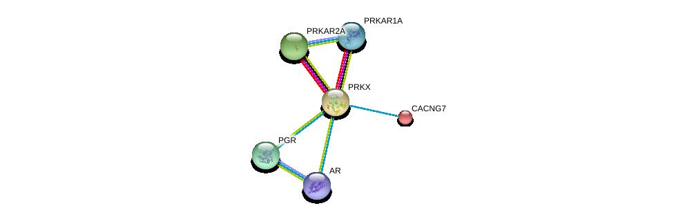 http://string-db.org/version_10/api/image/networkList?limit=0&targetmode=proteins&caller_identity=gene_cards&network_flavor=evidence&identifiers=9606.ENSP00000262848%0d%0a9606.ENSP00000363822%0d%0a9606.ENSP00000325120%0d%0a9606.ENSP00000351410%0d%0a9606.ENSP00000265563%0d%0a9606.ENSP00000222212%0d%0a
