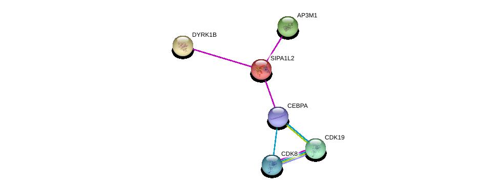 http://string-db.org/version_10/api/image/networkList?limit=0&targetmode=proteins&caller_identity=gene_cards&network_flavor=evidence&identifiers=9606.ENSP00000262861%0d%0a9606.ENSP00000347408%0d%0a9606.ENSP00000427514%0d%0a9606.ENSP00000312789%0d%0a9606.ENSP00000357907%0d%0a9606.ENSP00000370938%0d%0a
