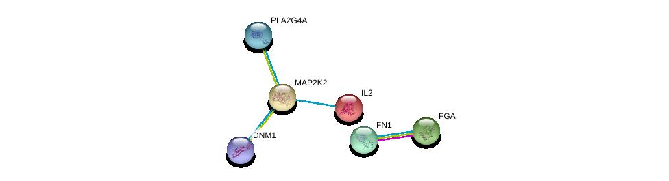 http://string-db.org/version_10/api/image/networkList?limit=0&targetmode=proteins&caller_identity=gene_cards&network_flavor=evidence&identifiers=9606.ENSP00000262948%0d%0a9606.ENSP00000346839%0d%0a9606.ENSP00000226730%0d%0a9606.ENSP00000306361%0d%0a9606.ENSP00000362014%0d%0a9606.ENSP00000356436%0d%0a
