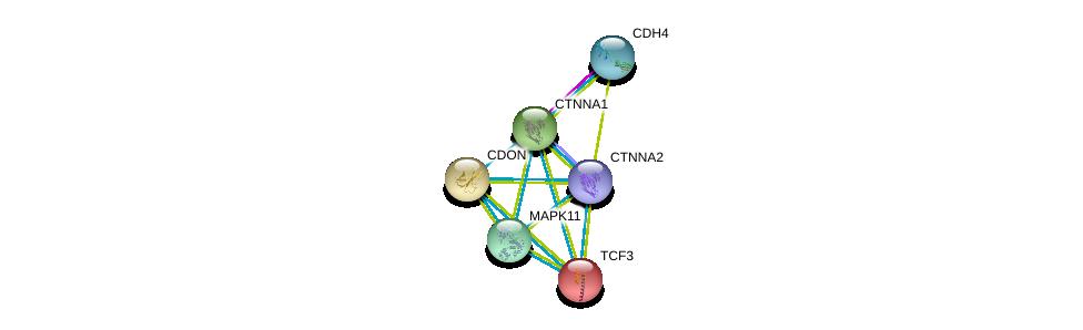 http://string-db.org/version_10/api/image/networkList?limit=0&targetmode=proteins&caller_identity=gene_cards&network_flavor=evidence&identifiers=9606.ENSP00000262965%0d%0a9606.ENSP00000263577%0d%0a9606.ENSP00000333685%0d%0a9606.ENSP00000418191%0d%0a9606.ENSP00000353656%0d%0a9606.ENSP00000304669%0d%0a