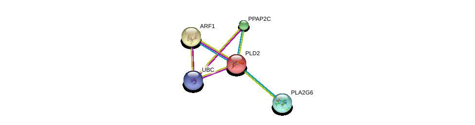 http://string-db.org/version_10/api/image/networkList?limit=0&targetmode=proteins&caller_identity=gene_cards&network_flavor=evidence&identifiers=9606.ENSP00000263088%0d%0a9606.ENSP00000272102%0d%0a9606.ENSP00000272102%0d%0a9606.ENSP00000344818%0d%0a9606.ENSP00000329697%0d%0a9606.ENSP00000333142%0d%0a