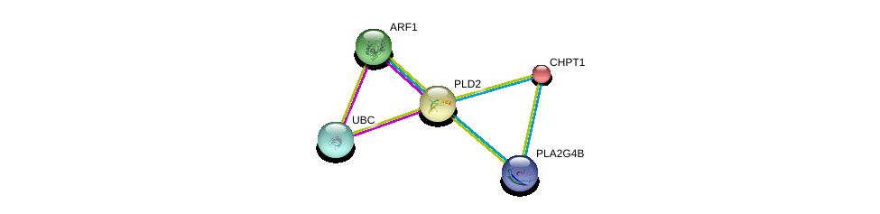 http://string-db.org/version_10/api/image/networkList?limit=0&targetmode=proteins&caller_identity=gene_cards&network_flavor=evidence&identifiers=9606.ENSP00000263088%0d%0a9606.ENSP00000272102%0d%0a9606.ENSP00000272102%0d%0a9606.ENSP00000344818%0d%0a9606.ENSP00000396045%0d%0a9606.ENSP00000229266%0d%0a