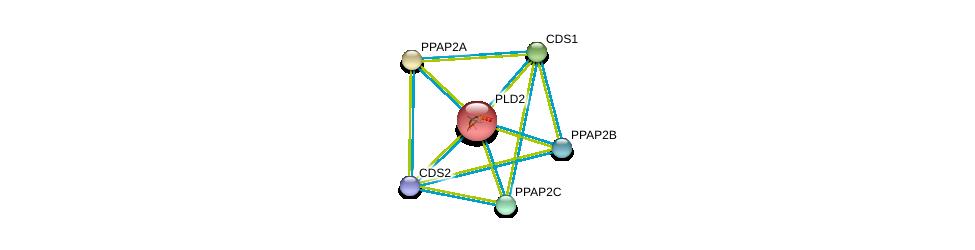 http://string-db.org/version_10/api/image/networkList?limit=0&targetmode=proteins&caller_identity=gene_cards&network_flavor=evidence&identifiers=9606.ENSP00000263088%0d%0a9606.ENSP00000329697%0d%0a9606.ENSP00000295887%0d%0a9606.ENSP00000419879%0d%0a9606.ENSP00000360296%0d%0a9606.ENSP00000264775%0d%0a