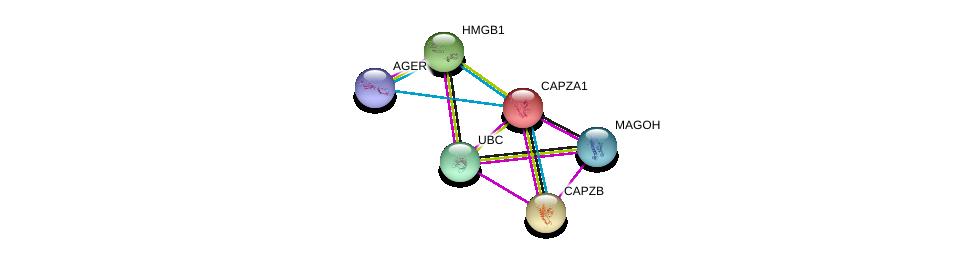 http://string-db.org/version_10/api/image/networkList?limit=0&targetmode=proteins&caller_identity=gene_cards&network_flavor=evidence&identifiers=9606.ENSP00000263168%0d%0a9606.ENSP00000360525%0d%0a9606.ENSP00000264202%0d%0a9606.ENSP00000344818%0d%0a9606.ENSP00000364217%0d%0a9606.ENSP00000343040%0d%0a