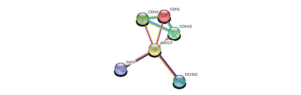 http://string-db.org/version_10/api/image/networkList?limit=0&targetmode=proteins&caller_identity=gene_cards&network_flavor=evidence&identifiers=9606.ENSP00000263207%0d%0a9606.ENSP00000261769%0d%0a9606.ENSP00000377862%0d%0a9606.ENSP00000349768%0d%0a9606.ENSP00000269141%0d%0a9606.ENSP00000289746%0d%0a