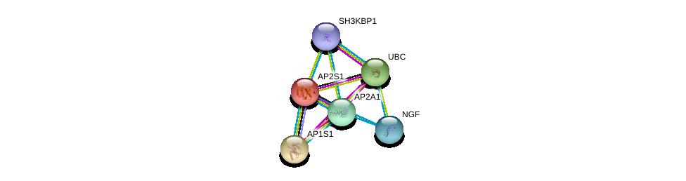 http://string-db.org/version_10/api/image/networkList?limit=0&targetmode=proteins&caller_identity=gene_cards&network_flavor=evidence&identifiers=9606.ENSP00000263270%0d%0a9606.ENSP00000344818%0d%0a9606.ENSP00000351926%0d%0a9606.ENSP00000380921%0d%0a9606.ENSP00000336666%0d%0a9606.ENSP00000358525%0d%0a