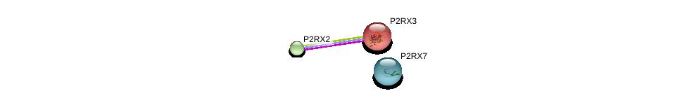 http://string-db.org/version_10/api/image/networkList?limit=0&targetmode=proteins&caller_identity=gene_cards&network_flavor=evidence&identifiers=9606.ENSP00000263314%0d%0a9606.ENSP00000343339%0d%0a9606.ENSP00000442349%0d%0a