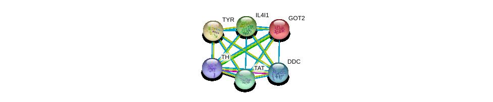 http://string-db.org/version_10/api/image/networkList?limit=0&targetmode=proteins&caller_identity=gene_cards&network_flavor=evidence&identifiers=9606.ENSP00000263321%0d%0a9606.ENSP00000245206%0d%0a9606.ENSP00000350616%0d%0a9606.ENSP00000348234%0d%0a9606.ENSP00000342557%0d%0a9606.ENSP00000370571%0d%0a