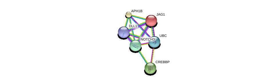http://string-db.org/version_10/api/image/networkList?limit=0&targetmode=proteins&caller_identity=gene_cards&network_flavor=evidence&identifiers=9606.ENSP00000263388%0d%0a9606.ENSP00000344818%0d%0a9606.ENSP00000355718%0d%0a9606.ENSP00000254958%0d%0a9606.ENSP00000261879%0d%0a9606.ENSP00000262367%0d%0a