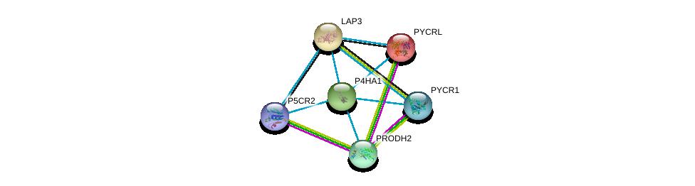 http://string-db.org/version_10/api/image/networkList?limit=0&targetmode=proteins&caller_identity=gene_cards&network_flavor=evidence&identifiers=9606.ENSP00000263556%0d%0a9606.ENSP00000226299%0d%0a9606.ENSP00000301175%0d%0a9606.ENSP00000328858%0d%0a9606.ENSP00000414068%0d%0a9606.ENSP00000220966%0d%0a