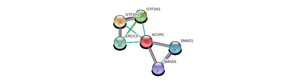 http://string-db.org/version_10/api/image/networkList?limit=0&targetmode=proteins&caller_identity=gene_cards&network_flavor=evidence&identifiers=9606.ENSP00000263640%0d%0a9606.ENSP00000305769%0d%0a9606.ENSP00000441954%0d%0a9606.ENSP00000265963%0d%0a9606.ENSP00000274400%0d%0a9606.ENSP00000285398%0d%0a