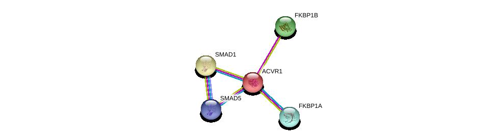 http://string-db.org/version_10/api/image/networkList?limit=0&targetmode=proteins&caller_identity=gene_cards&network_flavor=evidence&identifiers=9606.ENSP00000263640%0d%0a9606.ENSP00000441954%0d%0a9606.ENSP00000305769%0d%0a9606.ENSP00000371138%0d%0a9606.ENSP00000371138%0d%0a9606.ENSP00000370373%0d%0a