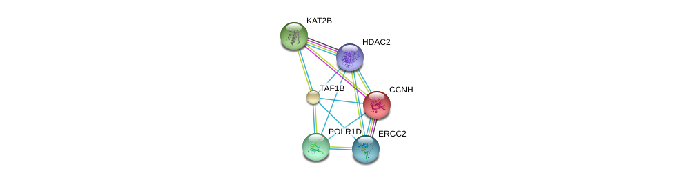 http://string-db.org/version_10/api/image/networkList?limit=0&targetmode=proteins&caller_identity=gene_cards&network_flavor=evidence&identifiers=9606.ENSP00000263663%0d%0a9606.ENSP00000430432%0d%0a9606.ENSP00000263754%0d%0a9606.ENSP00000302478%0d%0a9606.ENSP00000256897%0d%0a9606.ENSP00000375809%0d%0a