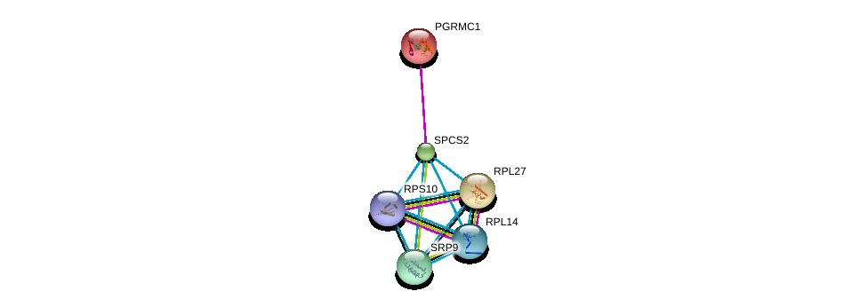 http://string-db.org/version_10/api/image/networkList?limit=0&targetmode=proteins&caller_identity=gene_cards&network_flavor=evidence&identifiers=9606.ENSP00000263672%0d%0a9606.ENSP00000217971%0d%0a9606.ENSP00000345156%0d%0a9606.ENSP00000347271%0d%0a9606.ENSP00000305230%0d%0a9606.ENSP00000253788%0d%0a