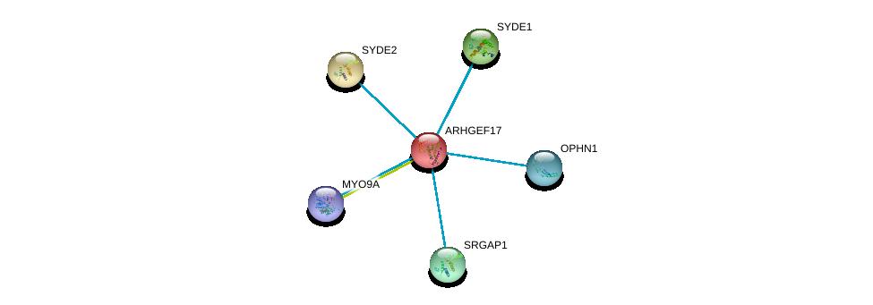 http://string-db.org/version_10/api/image/networkList?limit=0&targetmode=proteins&caller_identity=gene_cards&network_flavor=evidence&identifiers=9606.ENSP00000263674%0d%0a9606.ENSP00000341489%0d%0a9606.ENSP00000340594%0d%0a9606.ENSP00000347198%0d%0a9606.ENSP00000347710%0d%0a9606.ENSP00000348349%0d%0a