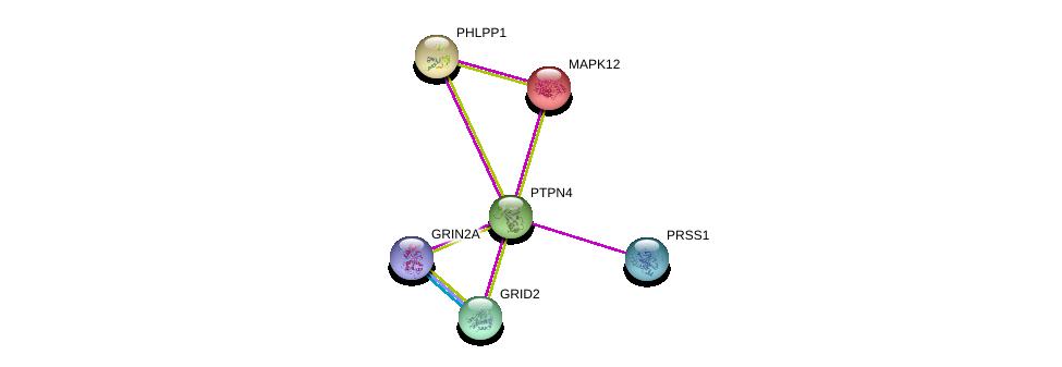http://string-db.org/version_10/api/image/networkList?limit=0&targetmode=proteins&caller_identity=gene_cards&network_flavor=evidence&identifiers=9606.ENSP00000263708%0d%0a9606.ENSP00000215659%0d%0a9606.ENSP00000282020%0d%0a9606.ENSP00000332549%0d%0a9606.ENSP00000308720%0d%0a9606.ENSP00000262719%0d%0a