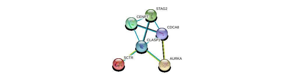 http://string-db.org/version_10/api/image/networkList?limit=0&targetmode=proteins&caller_identity=gene_cards&network_flavor=evidence&identifiers=9606.ENSP00000263710%0d%0a9606.ENSP00000316121%0d%0a9606.ENSP00000019103%0d%0a9606.ENSP00000216911%0d%0a9606.ENSP00000218089%0d%0a9606.ENSP00000219172%0d%0a